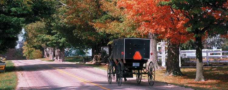 Things to do in amish country in amish country lodging for Amish country things to do