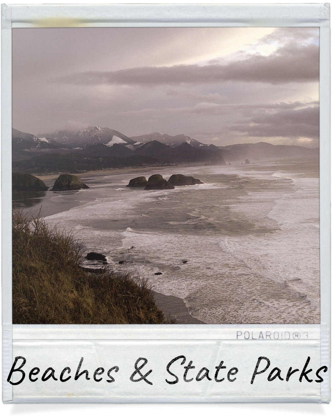 Beaches and State Parks near The Waves Cannon Beach in OR